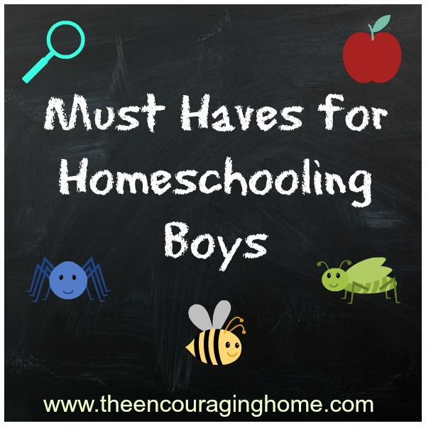 Here are my Must Haves for Homeschooling Boys